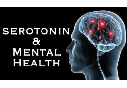 Does Low Serotonin Cause Depression?